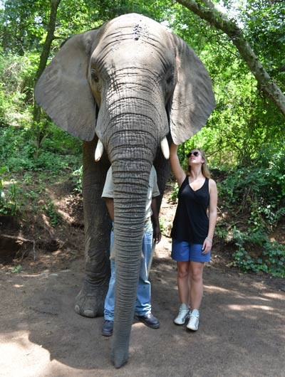 hazyview-elephant-sanctuary-side-10