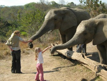 hazyview-elephant-sanctuary-19